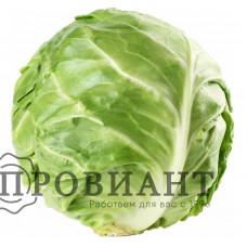 Капуста (вес)