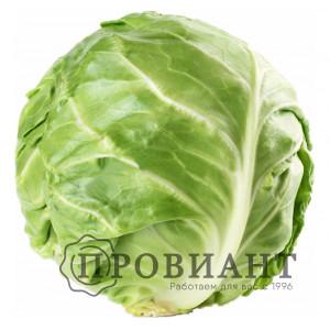 Капуста свежий урожай (вес)