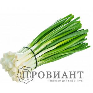Лук зеленый (вес)