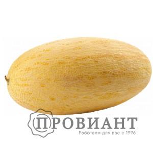 Дыня Торпеда (вес)