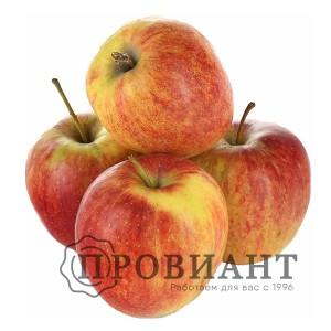 Яблоки Глостер (вес)