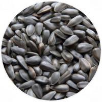 Семена подсолнечника жареные (вес)