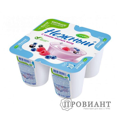 Йогурт Нежный с соком лесных ягод 100г