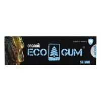 Жевательная смола EcoGum steam 5г